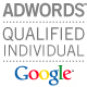 WSI B2B Marketing Partner Goolge Adwords